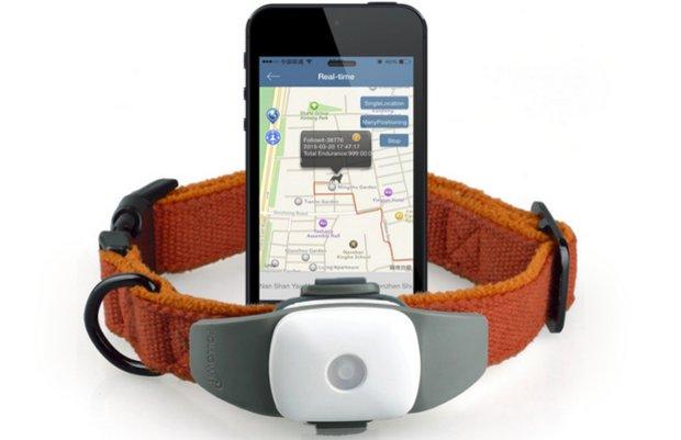 Нашийники для собак з GPS